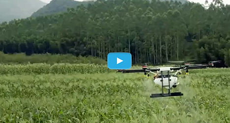 drone agriculture and forestry plant protection